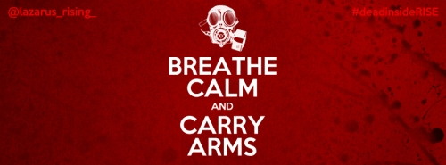 """Breathe Calm and Carry Arms"" © 2012 Artwork by Dulani Wilson. All rights reserved."